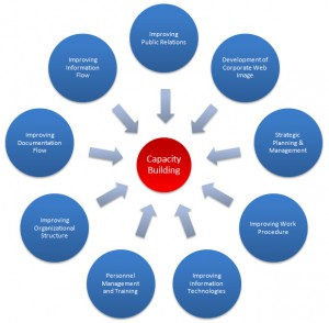capacity-building1